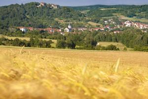 Blick ueber Reichelsheim1